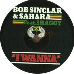 Bob Sinclar - I wanna (unofficial)