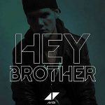 Avicii -Hey-brother