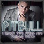 Pitbull-I-know-you-want-me-(calle-ocho)