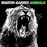 Martin-Garrix-Animals