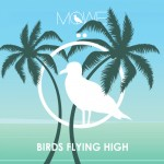 Möwe-Birds-flying-high