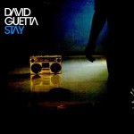 David-Guetta-feat.-Chris-Willis-Stay