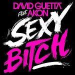 David-Guetta-feat.-Akon-Sexy-bitch